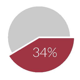 A pie chart showing 34%