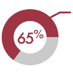 A pie chart showing 65%