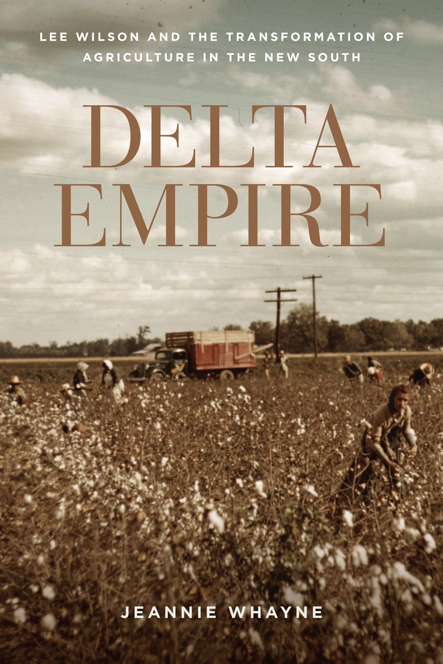 Delta Empire by Jeannie Whayne